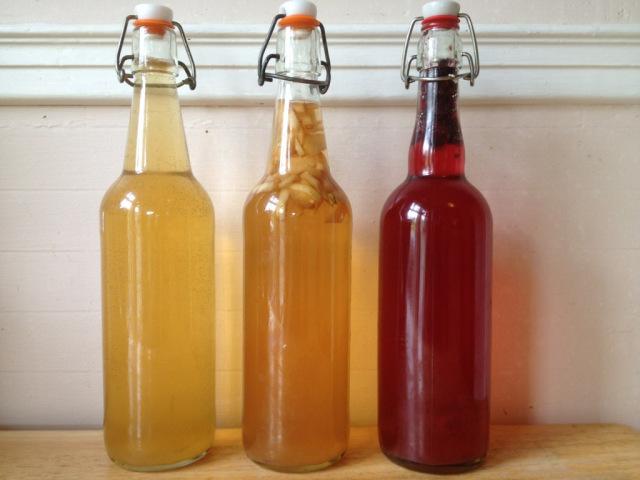 kombucha bottled up